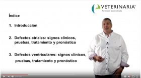 Defectos septales -Cardiología